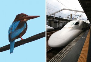 High-speed trains dans Biomimicry animal-biomimicry-kingfisher-bullet-train-300x205