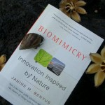 Introduction to biomimicry/biomimetics/bionics book_intro-150x150